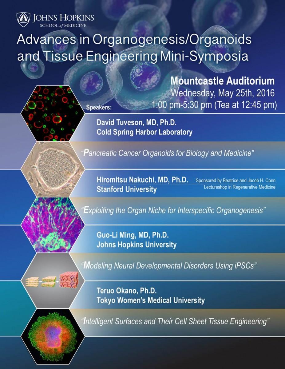 minisymposium