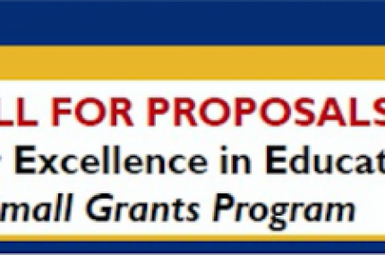 IEE small grants