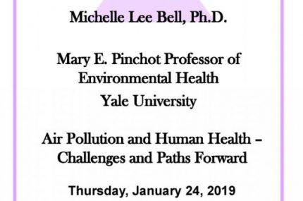 Menkes 2019 Flyer Michelle Bell[1]